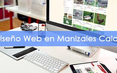 Diseño de Páginas Web en Manizales